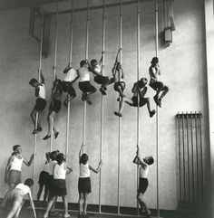1cd3beabfd516a0766ecf46eb1282461--rope-climbing-elementary-schools